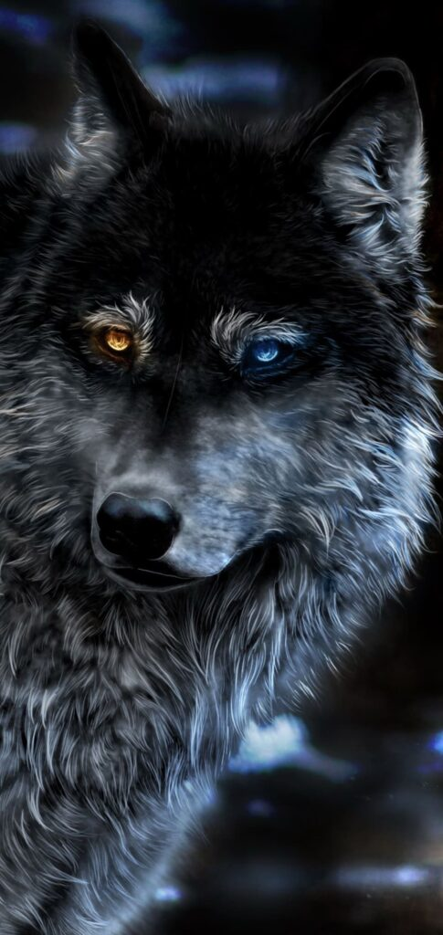 wolf iphone background
